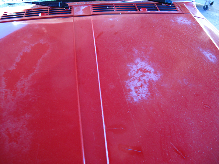 Entire car sun damaged